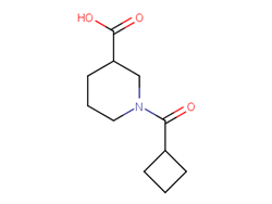 1-(cyclobutylcarbonyl)piperidine-3-carboxylic acid 926214-73-5 1C57892 MFCD09043166