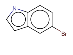 5-Bromoindole 10075-50-0 1C10296 MFCD00005670