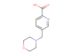 5-(morpholin-4-ylmethyl)pyridine-2-carboxylic acid 1211591-20-6 2C91258 MFCD18261502